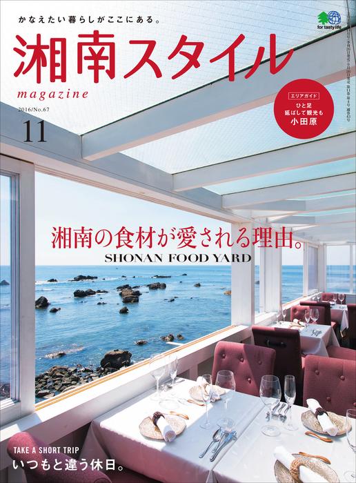 湘南スタイルmagazine 2016年11月号 第67号拡大写真