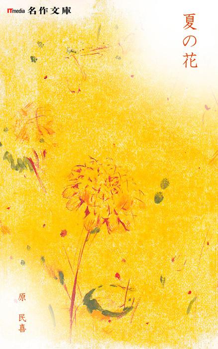 夏の花拡大写真