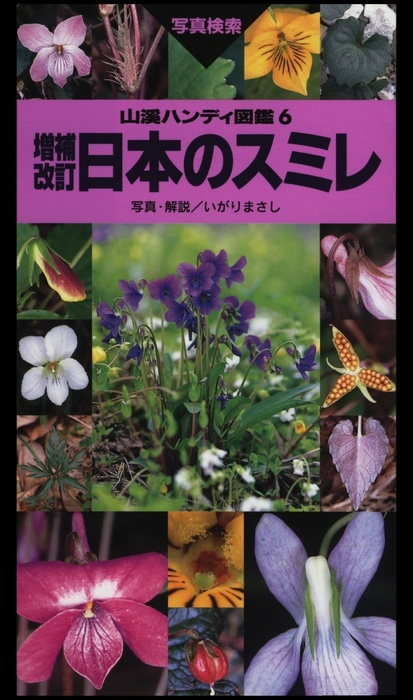 ヤマケイハンディ図鑑6 増補改訂 日本のスミレ拡大写真
