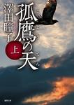 孤鷹(こよう)の天 上-電子書籍