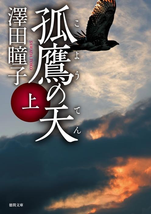 孤鷹(こよう)の天 上拡大写真