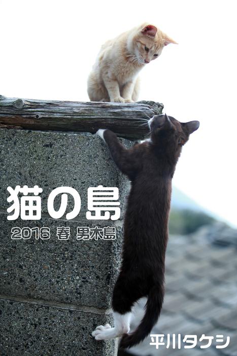 猫の島 2016 春 男木島拡大写真