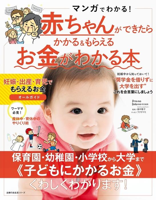 赤ちゃんができたらかかる&もらえるお金がわかる本拡大写真