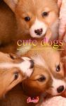cute dogs34 ウェルシュ・コーギー-電子書籍