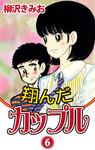 翔んだカップル(6)-電子書籍