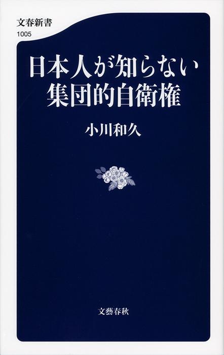 日本人が知らない集団的自衛権拡大写真