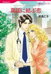異国に結ぶ恋-電子書籍