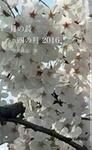 月の詩 四の月 2016-電子書籍