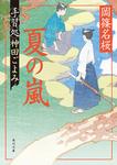 夏の嵐 手習処神田ごよみ-電子書籍