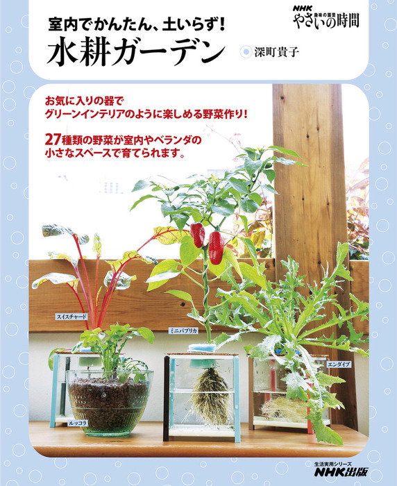 NHK趣味の園芸 やさいの時間 室内でかんたん、土いらず! 水耕ガーデン拡大写真