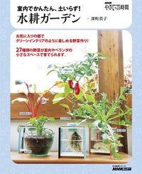 NHK趣味の園芸 やさいの時間 室内でかんたん、土いらず! 水耕ガーデン-電子書籍