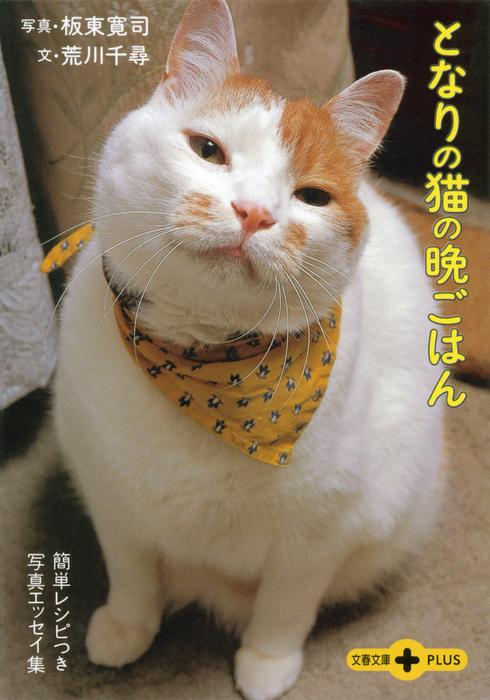 となりの猫の晩ごはん 簡単レシピつき写真エッセイ集拡大写真