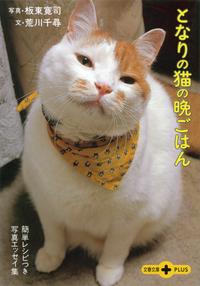 となりの猫の晩ごはん 簡単レシピつき写真エッセイ集-電子書籍