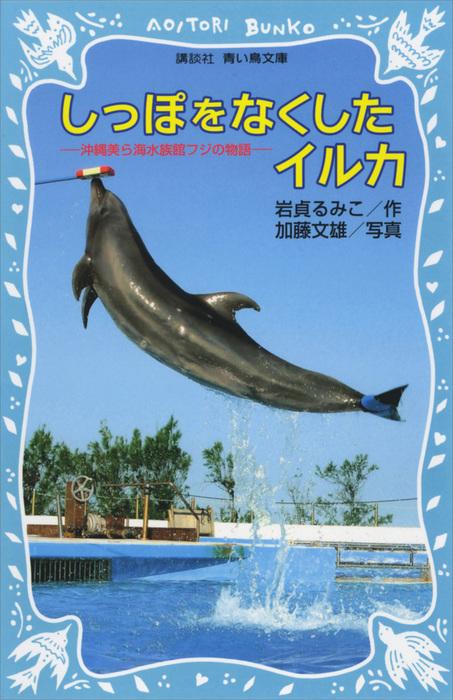 しっぽをなくしたイルカ 沖縄美ら海水族館フジの物語拡大写真