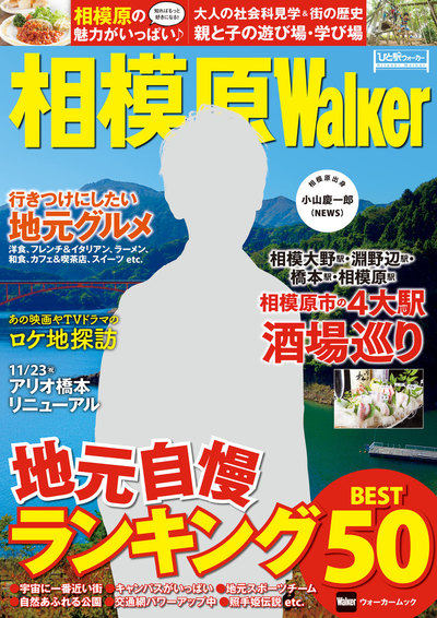 相模原Walker-電子書籍