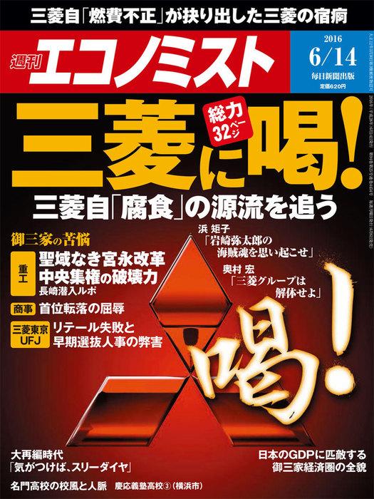 週刊エコノミスト (シュウカンエコノミスト) 2016年06月14日号拡大写真