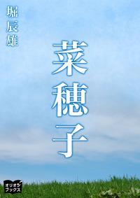 菜穂子-電子書籍