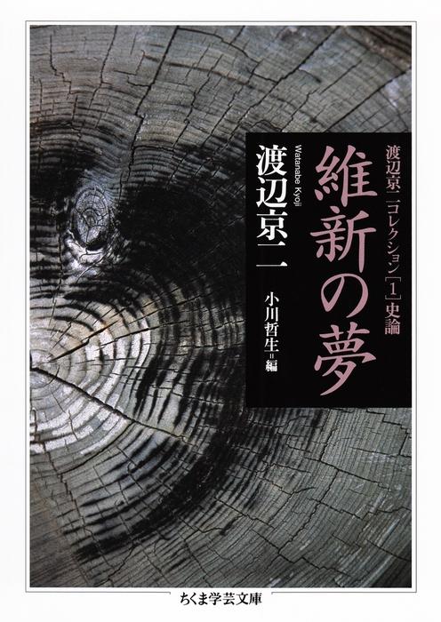 維新の夢 ──渡辺京二コレクション1 史論拡大写真