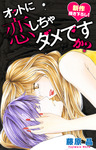 Love Silky オットに恋しちゃダメですか? story14-電子書籍