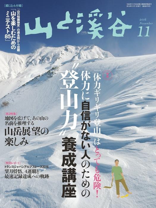 山と溪谷 2016年 11月号 [雑誌]拡大写真