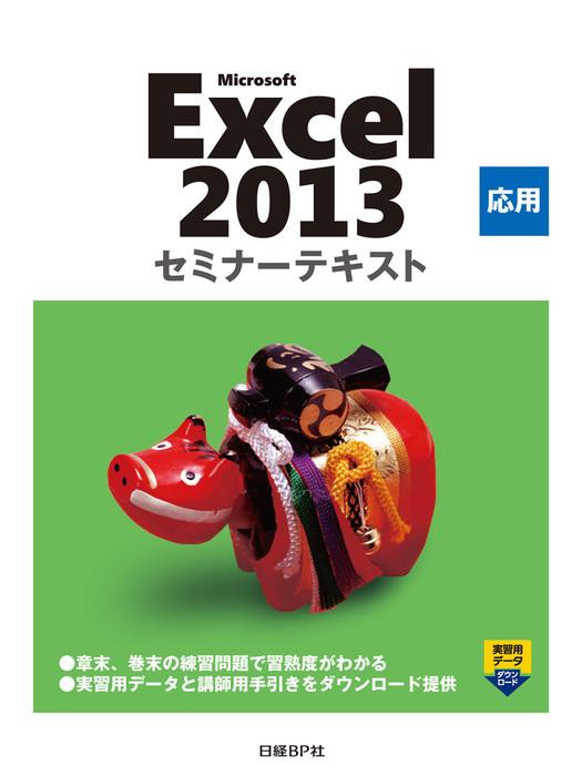 Microsoft Excel 2013 応用 セミナーテキスト拡大写真