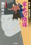 家光の陰謀~乾蔵人 隠密秘録(六)~-電子書籍