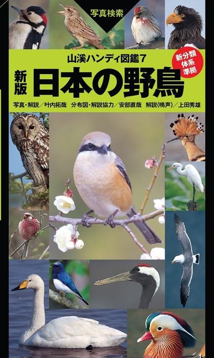 ヤマケイハンディ図鑑7 新版 日本の野鳥拡大写真