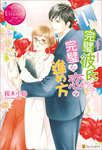 完璧彼氏と完璧な恋の進め方-電子書籍