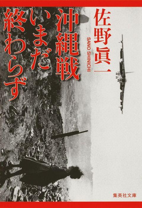 沖縄戦いまだ終わらず拡大写真