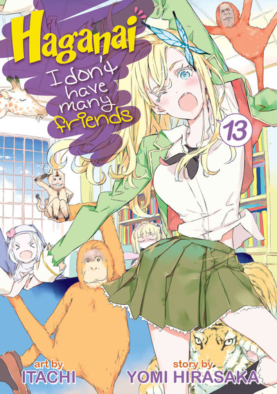 Haganai: I Don't Have Many Friends Vol. 13-電子書籍