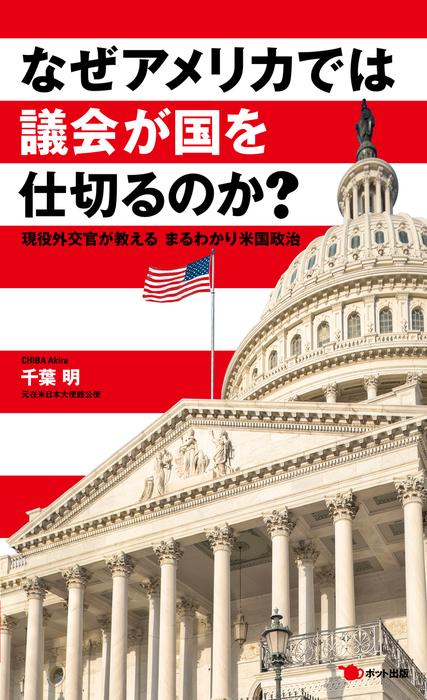 なぜアメリカでは議会が国を仕切るのか? 現役外交官が教える まるわかり米国政治拡大写真