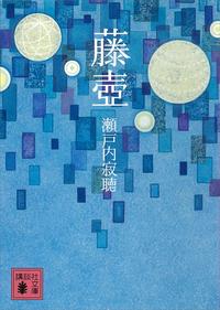 藤壺-電子書籍