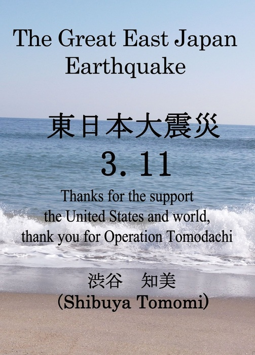 The Great East Japan Earthquake 3.11拡大写真