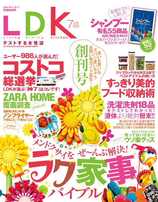 LDK (エル・ディー・ケー) 2013年 7月号拡大写真
