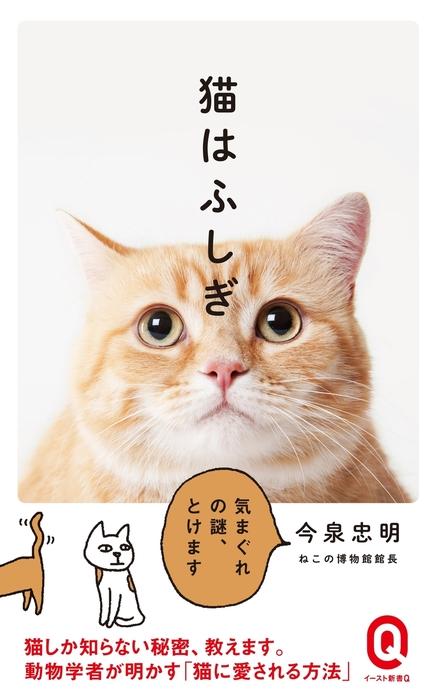 猫はふしぎ拡大写真