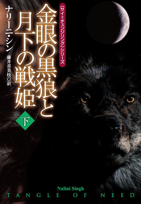 金眼の黒狼と月下の戦姫 下拡大写真
