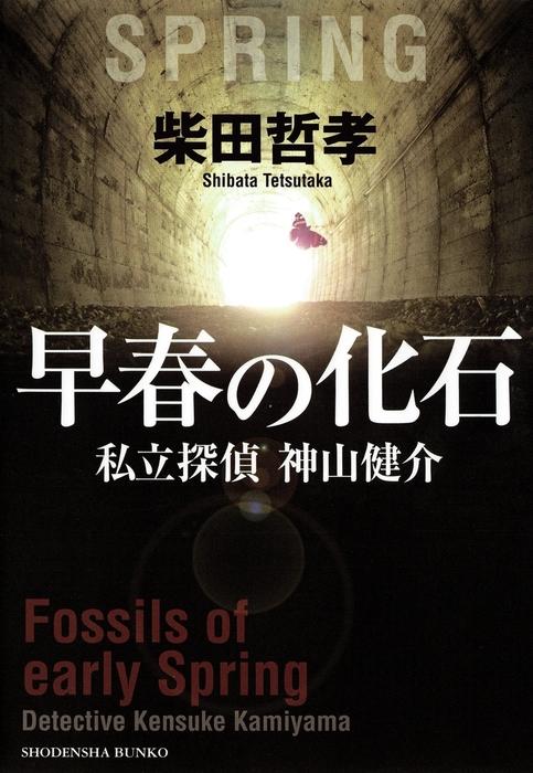 早春の化石 私立探偵 神山健介拡大写真