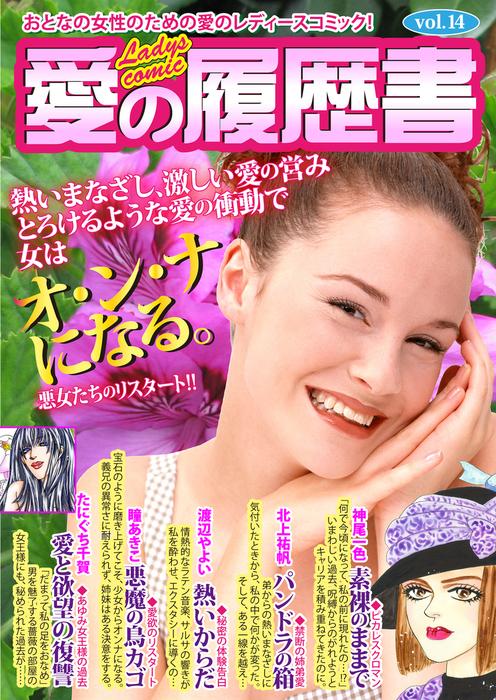 愛の履歴書Vol.14拡大写真