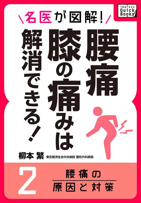 名医が図解! 腰痛・膝の痛みは解消できる! (2) 腰痛の原因と対策拡大写真