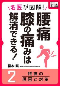 名医が図解! 腰痛・膝の痛みは解消できる! (2) 腰痛の原因と対策-電子書籍