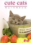 cute cats12 ブリティッシュショートヘア-電子書籍
