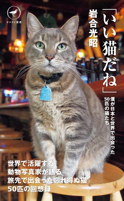 ヤマケイ新書 「いい猫だね」拡大写真