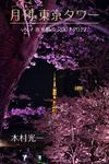 月刊 東京タワーvol.7 夜光散歩 2007-2017-電子書籍