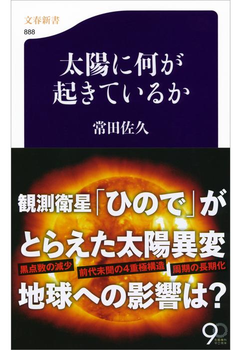 太陽に何が起きているか拡大写真