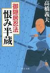 御隠居忍法6 恨み半蔵-電子書籍