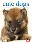 cute dogs04 柴犬-電子書籍