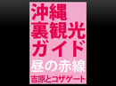 沖縄裏観光ガイド 昼の赤線 吉原とコザゲート-電子書籍
