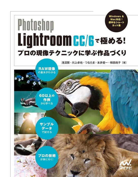 Photoshop Lightroom CC/6で極める! プロの現像テクニックに学ぶ作品づくり-電子書籍-拡大画像