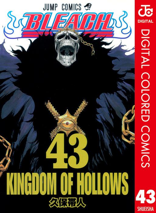 BLEACH カラー版 43-電子書籍-拡大画像