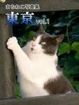 まちねこ写真集・東京 vol.1-電子書籍